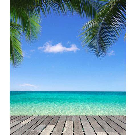 xft beach blue sky tree photography background backdrop