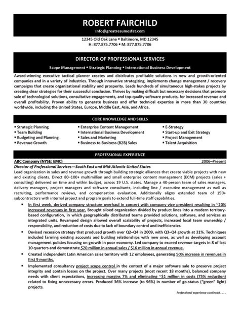director of professional services resume