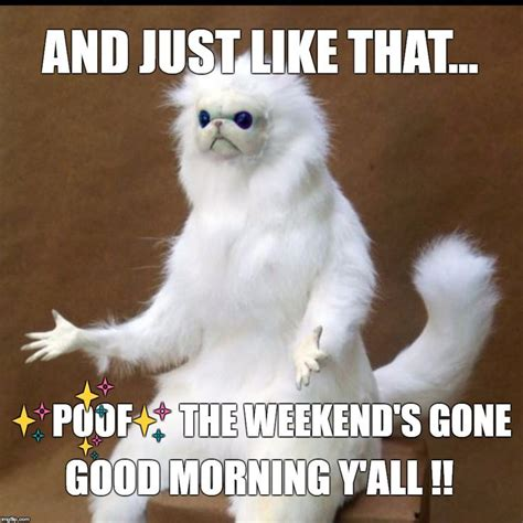 Morning Memes For 342 Best Morning Meme Images On Memes