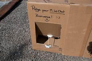 Trappe Pour Chat : embruns journal de bord le chat ~ Dode.kayakingforconservation.com Idées de Décoration