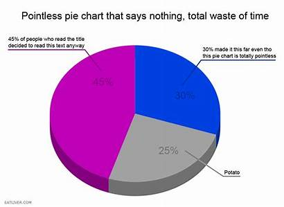 Pie Chart Pointless Charts Funny Invaluable Really