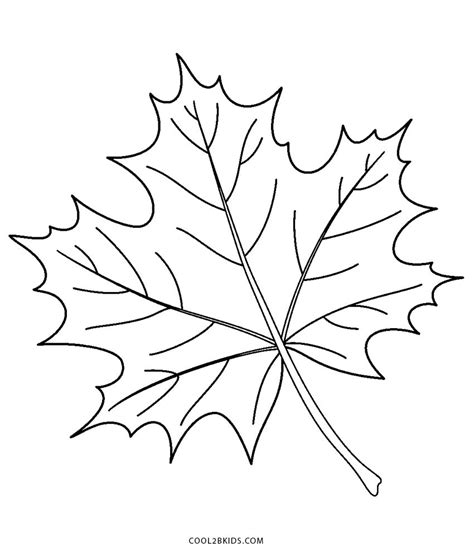 coloring pages for free printable leaf coloring pages for cool2bkids
