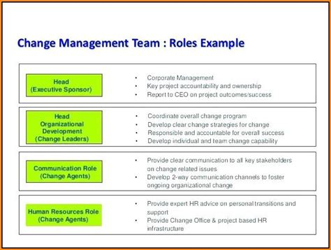 chronic care management documentation template template