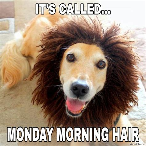 Because without coffee, we're not quite as alert as we could be. Have a great monday morning meme - MemeZila.com