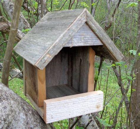 pin  bird feeders  bird houses