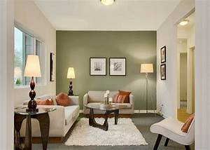 Living Room : Living Room Accent Wall Ideas Accent Wall ...