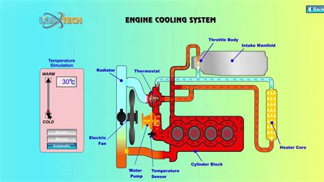 How Does The Cooling System Work Car You Will
