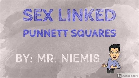 Mr Niemis Flipped Lessons Sex Linked Punnett Squares