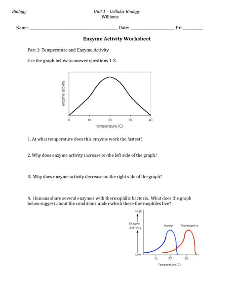 20 Best Images Of Explain How Enzymes Work Enzyme Graph Worksheet 1 Answers Using Enzyme