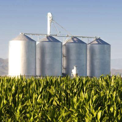 Энергия из спирта и навоза преимущества и недостатки биотоплива рбк тренды