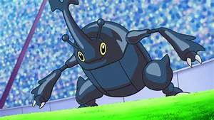 Ash's Heracross - Bulbapedia, the community-driven Pokémon ...