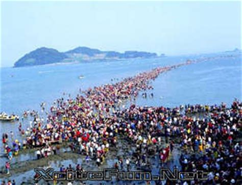 jindo moses miracle splitting   red sea xcitefunnet