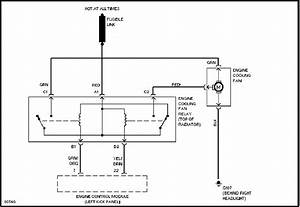 Wiring Diagram For Radiator Fan Relay