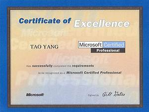 resume of tao yang With microsoft certification documents