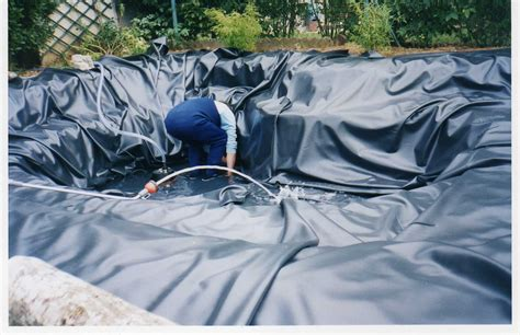 liner pour bassin exterieur bienvenue chez jacques berthet 187 bassin d exterieur