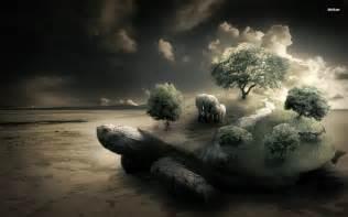 turtle backgrounds  pixelstalknet