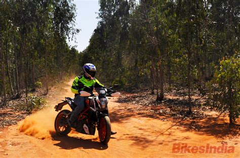 Motorcycle Diaries- A Forest With Plants Larger Than Us