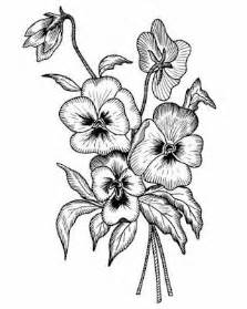 Black and White Pansy Flower Drawing