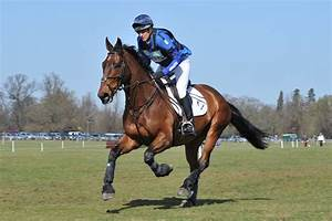 Do You Know How To Gallop Your Horse Correctly