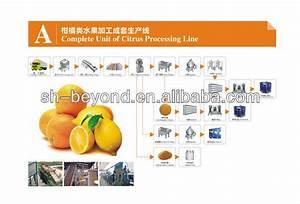 Citrus Juice Processing Line Orange Juice Processing