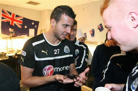 Newcastle+United+ » Who Ate all the Pies