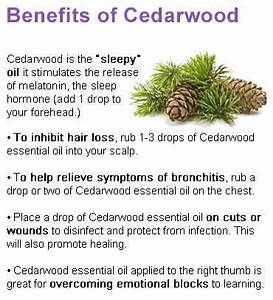 1000 Images About Cedar On Pinterest Trees Anxiety And