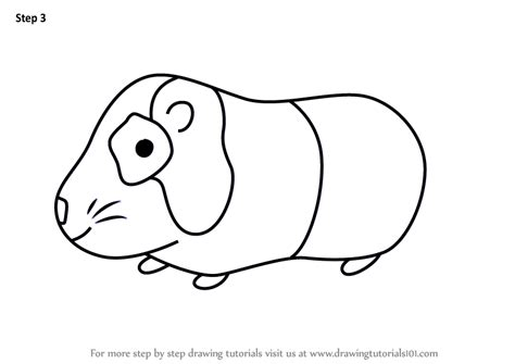 learn   draw  guinea pig  kids animals  kids