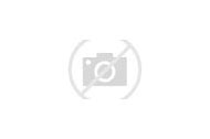 Terracotta Outdoor Patio Tile