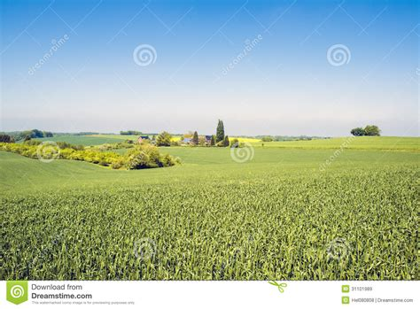 Agrarian Landscape With Farm Stock Image Image Of
