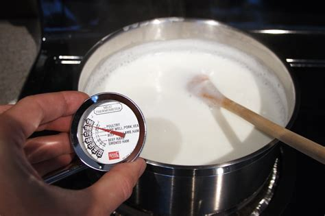 yogurt   fileserver foodists