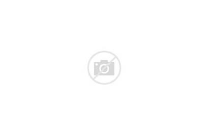 Empty Suburban Stores