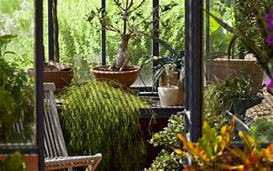 Jardin D Hiver Veranda : cr er un jardin d hiver dans sa v randa id es et conseils ~ Premium-room.com Idées de Décoration