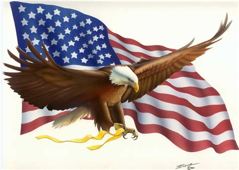 eagle high definition wallpapers   page