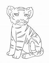 Tiger Coloring Printable sketch template