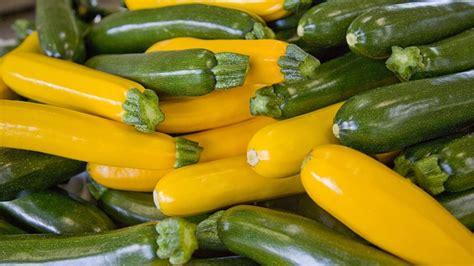 comment cuisiner la courge courge comment la planter et la cultiver jardinage