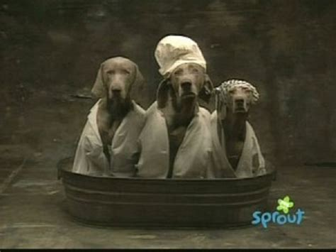 who are the three in the tub inkspired musings nursery rhyme time with 3 in a tub