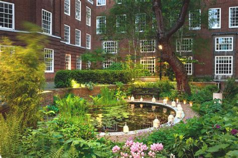 landscaping seminars bma evening event gardening and plant medicines for mental and social health 26 may