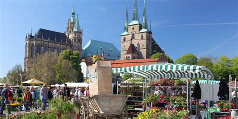Garten Kaufen Um Erfurt by Start In Den Bl 252 Henden Sommer 27 Erfurter Blumen Und