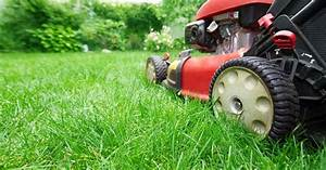Mow Your Lawn This Saturday And Get A Free Video Game