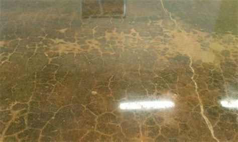 Can Cracked Concrete Be Polished?