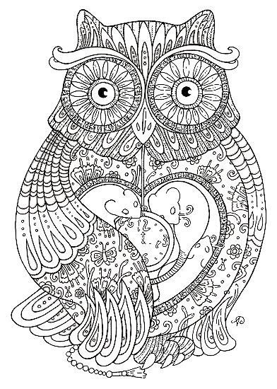 nocturnal bird owl coloring pages  pictures cartoon clip arts print color craft