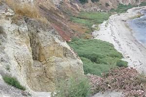 V Ling: Palos Verdes