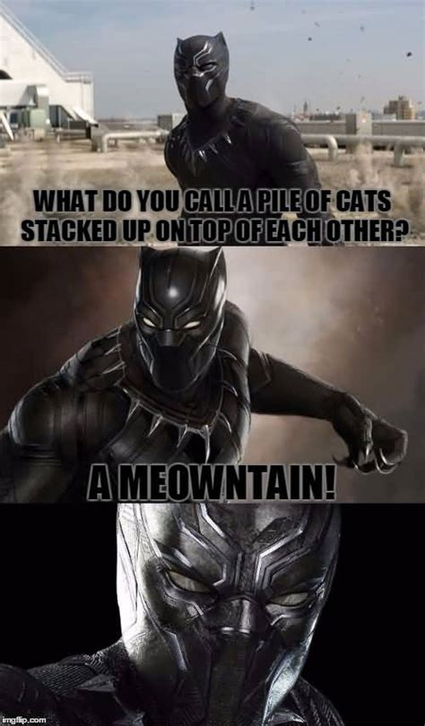 top black panther meme images   quotesbae
