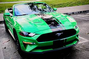 EcoBoost Mustang in 'Need for Green': Is it Worth Your 'Green?'