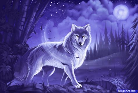 Anime Slideshow Wallpaper - learn how to draw a gray wolf timber wolf concept