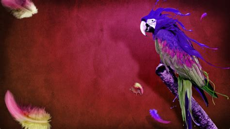 3d Birds Wallpapers by 3d Moving Wallpaper For Phone 49 Images