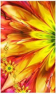 Colorful Flowers Wallpapers HD   PixelsTalk.Net