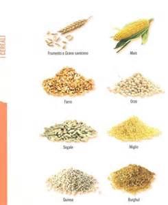 Cuscino con chicchi di grano : Veganchef i cereali