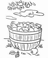 Coloring Thanksgiving Pages Basket Dinner Sheets Harvest Fall Apples Apple Activity Feast Bible Drawing Easy Foods Colouring Printable Rabbit Clipart sketch template
