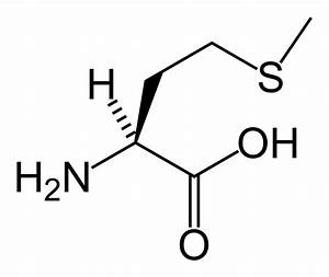 File:L-methionine-skeletal.png - Wikipedia
